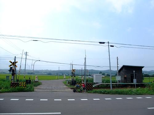 DSCF3547.jpg