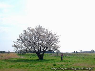 DSCF4287.jpg