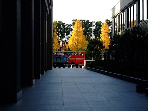 DSCF5486.jpg