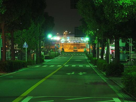 IMGP0029.jpg